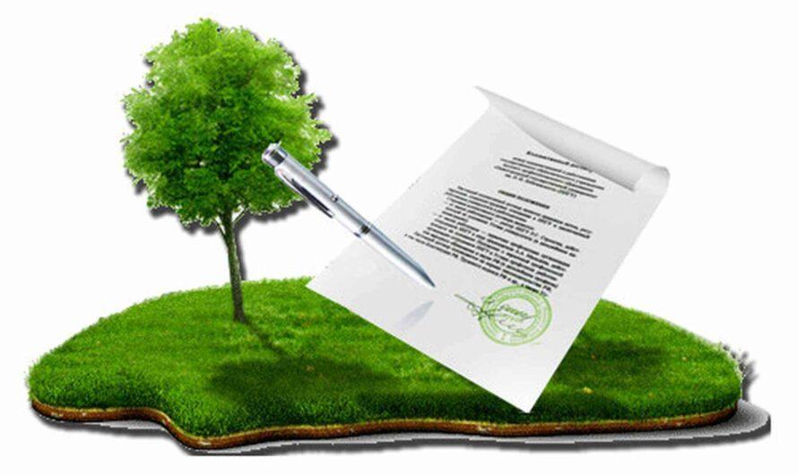 Как подарить земельный участок: особенности дарения земли близкому родственнику?
